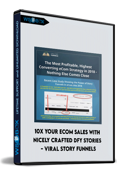 10X-Your-Ecom-Sales-With-Nicely-Crafted-DFY-Stories---Viral-Story-Funnels