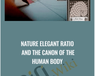 Nature Elegant Ratio and the Canon of the Human Body
